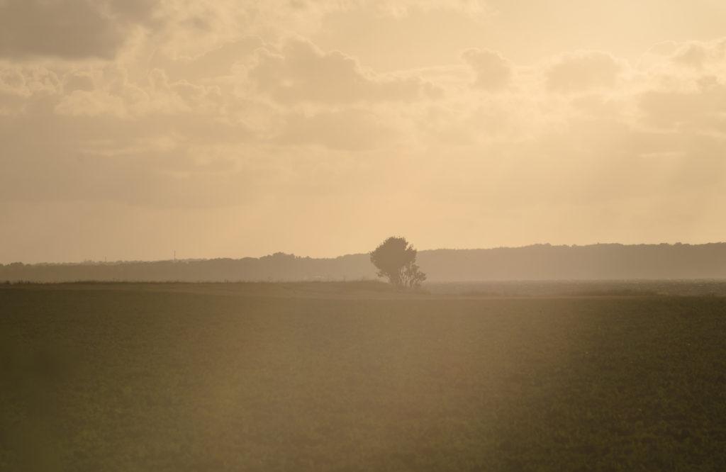 Bild av abstrakt landskap